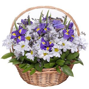 Любимый сюжет +30% цветов с доставкой в Брянске