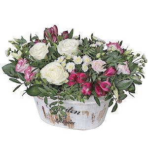 Мечта +30% цветов с доставкой в Брянске