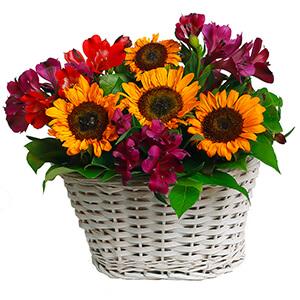 Теплый вечер +30% цветов с доставкой в Брянске