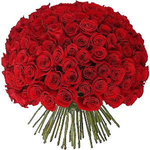 Букет из 101 красной розы с доставкой в Брянске